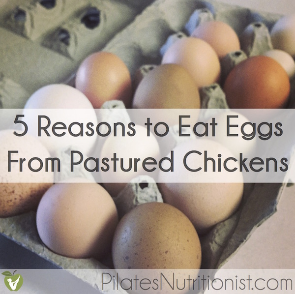 5 Reasons To Eat Real Eggs From Pastured Chickens - Pilates Nutritionist