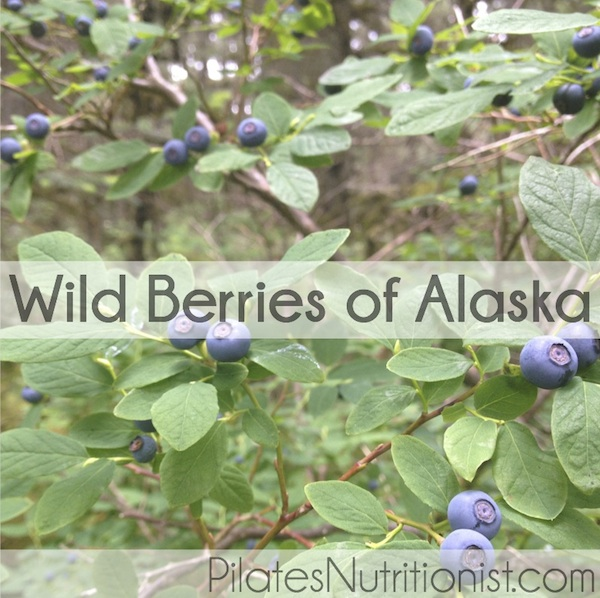 wild berries of Alaska