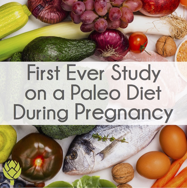 Paleo Diet in Pregnancy